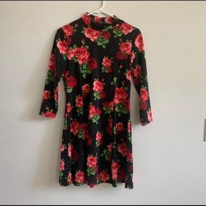 Forever 21 Medium Long Sleeve Dress with Roses